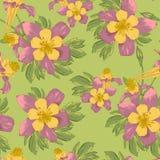 Elegancja kwiatów Bezszwowy tło royalty ilustracja