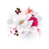 Elegancja kwitnie bukiet magnolie, kolor róża i tulipan biali piękni, Skład z okwitnięcie kwiatami wektor royalty ilustracja