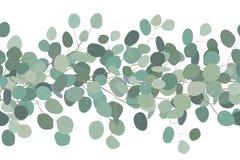 Elegancka bezszwowa granica eukaliptusowe gałąź rama kwiecista wrobi? serii Wektorowa r?ka rysuj?ca ilustracja Bia?y t?o royalty ilustracja