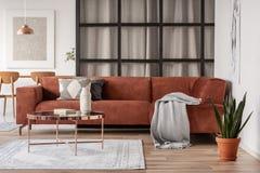 Elegancka brązu kąta kanapa z wzorzystymi poduszkami w eleganckim żywym izbowym wnętrzu z mullions ścianą zdjęcie royalty free