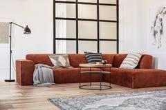 Elegancka brązu kąta kanapa z wzorzystymi poduszkami w eleganckim żywym izbowym wnętrzu z mullions ścianą zdjęcia stock