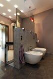 Elegancka brown toaleta zdjęcia stock