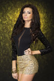 Elegancka brunetki dama. Zdjęcia Royalty Free