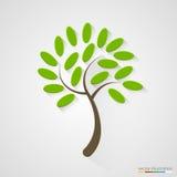 Elegancka drzewna sylwetka pojęcia odosobniony natury biel Zdjęcie Stock
