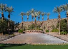 Elegancka fontanna, palmy pustynia, Kalifornia Fotografia Stock