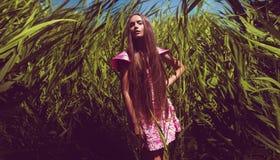 Elegancka kobieta w sukni w wysokim trawa gąszczu Zdjęcie Stock