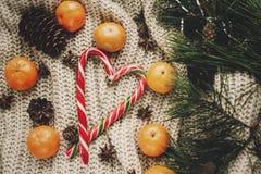 Elegancka miętowego cukierku trzcina w sercu i sośnie konusuje tangerine Obraz Royalty Free