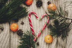 Elegancka miętowego cukierku trzcina w sercu i sośnie konusuje tangerine Fotografia Stock