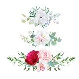 Elegancka mieszanka horyzontalnych kwiatów bukietów projekta wektorowi kwiaty ustawiający ilustracja wektor