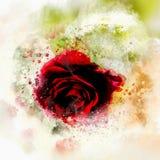 Elegancka piękna walentynki karta z sercem i czerwonymi różami obraz stock