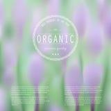 Elegancka zamazana ilustracja z wiosna kwiatami Obrazy Royalty Free
