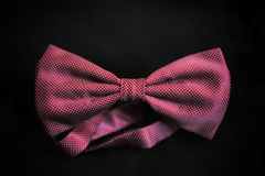 Elegancki łęku krawat Obraz Royalty Free