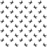Elegancki abstrakcjonistyczny bezszwowy wzór z czarnymi graficznymi ptakami Zdjęcia Royalty Free