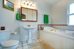 Elegancki łazienki intrerior Fotografia Royalty Free