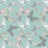 Elegancki bezszwowy wzór z ślicznymi motylami Zdjęcie Stock