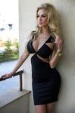 Elegancki blondynki piękna pozować. Obrazy Stock