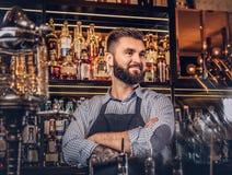 Elegancki brutalny barman w koszula i fartucha pozyci z krzyżować rękami przy barem sprzeciwia się tło fotografia stock