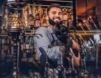 Elegancki brutalny barman w koszula i fartucha utrzymań thoroughbred czerni mopsie przy barem sprzeciwia się tło obrazy royalty free