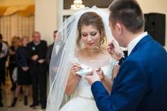Elegancki elegancki fornal z jego szczęśliwą wspaniałą brunetki panną młodą dalej Zdjęcia Royalty Free