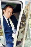 Elegancki elegancki wspaniały fornal z przesłoną na tle tr Fotografia Stock