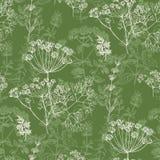 Elegancki klasyczny ziołowy bezszwowy wzór ilustracji