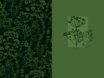Elegancki klasyczny ziołowy bezszwowy wzór ilustracja wektor