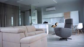 Elegancki mieszkania wnętrze z nowożytną kuchnią r Nowożytny modny wnętrze mieszkanie zdjęcie wideo