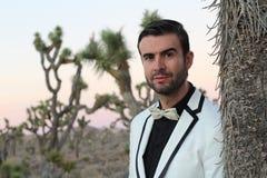 Elegancki potomstwo mody mężczyzna w smokingu strzelał przy wschodem słońca w Joshua drzewa parku narodowym, Kalifornia, usa Zdjęcia Royalty Free