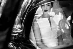 Elegancki przystojny elegancki fornal trzyma delikatnie wspaniałej panny młodej UN Zdjęcie Royalty Free