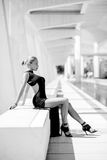 Elegancki seksowny kobiety pozować Obraz Royalty Free