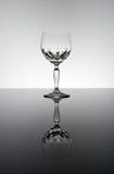 elegancki szklany wino Zdjęcie Stock
