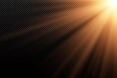 Elegancki złocisty lekki skutek na przejrzystym ciemnym tle złote promienie ciemności światła Jaskrawy wybuch sunlight Abstrakt royalty ilustracja