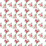 Eleganckiego wyszukanego uroczego kwiecistego kolorowego wiosny lata różowe i czerwone róże z zieloną liści bukietów przekątną de royalty ilustracja