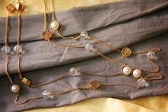 Elegans Earings Royaltyfria Bilder
