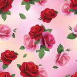 Elegant abstract seamless floral pattern with red and pink roses Stock Photos
