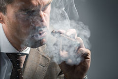 Elegant adult man in a cloud of smoke. Side view of elegant adult man in a cloud of smoke Royalty Free Stock Image