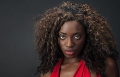 Elegant African Model. Beautiful black woman with big hair in a red dress Stock Photos