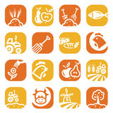 Color agriculture and farming icons. Elegant Agriculture Icons Set Created For Mobile, Web And Applications Stock Images