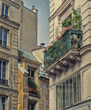 Elegant Apartment Blocks in Paris Stock Photo