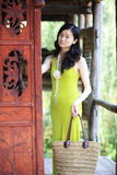 Elegant asian lady Stock Image