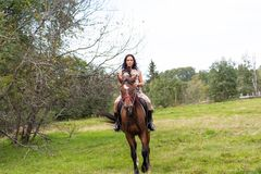 Elegant attractive woman riding a horse. Farm Royalty Free Stock Photo