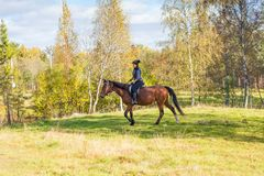 Elegant attractive woman riding a horse Royalty Free Stock Photo