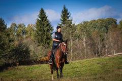 Elegant attractive woman riding a horse Royalty Free Stock Photos