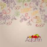 Elegant autumn illustrated background Royalty Free Stock Image