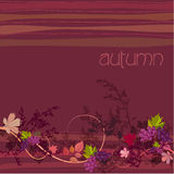 Elegant autumn illustrated background Stock Images