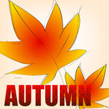 Elegant autumn illustration Royalty Free Stock Photography
