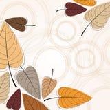 Elegant autumn leaves illustration Stock Photography