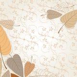 Elegant autumn leaves illustration Stock Images