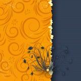 Elegant background Stock Image