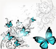 Elegant background with butterflies and ornament Royalty Free Stock Photo